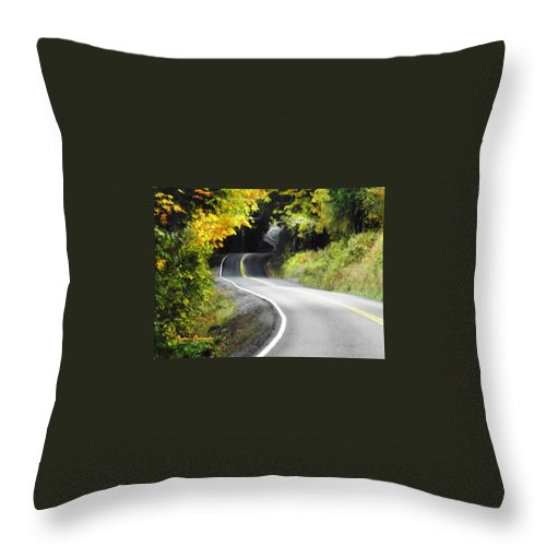 Roads Throw Pillow featuring the photograph The Low Road by A L Sadie Reneau