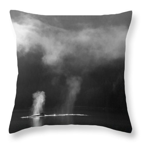 Whale Throw Pillow featuring the photograph The Morning After by Max Waugh