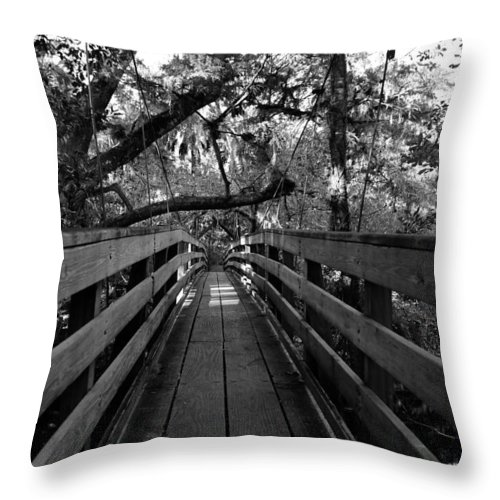 Fine Art Photography Throw Pillow featuring the photograph The Old Hillsborough Bridge by David Lee Thompson