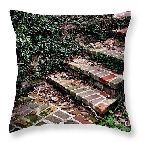 Steps Throw Pillow featuring the photograph The Old Steps by Perry Webster