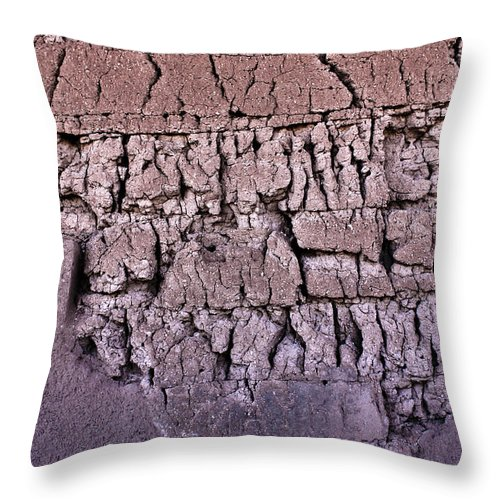 Arizona Throw Pillow featuring the photograph The Old Wall by Adam Smith