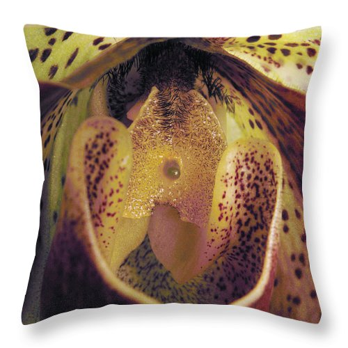 Orchid Throw Pillow featuring the photograph The Orchid Center by Nancy Griswold