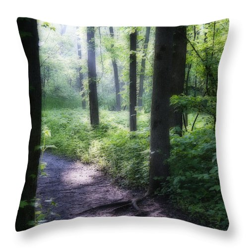 Path Throw Pillow featuring the photograph The Path by David Arment