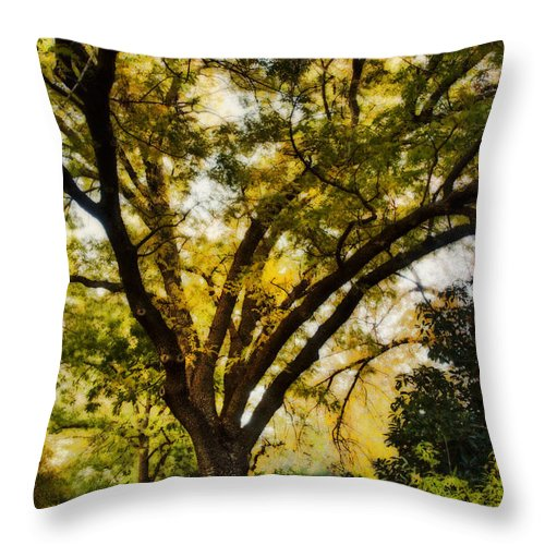 Fall Throw Pillow featuring the photograph The Path by Saija Lehtonen