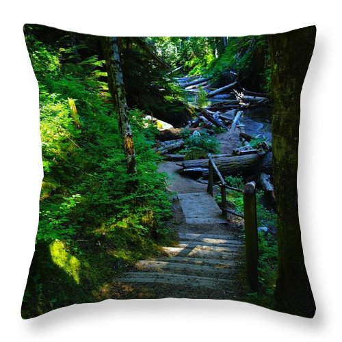 Path Throw Pillow featuring the photograph The Path To Iron Creek by Jeff Swan