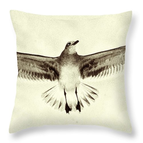 Beach Throw Pillow featuring the photograph The Perfect Wing by Jim Moore