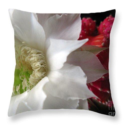 Flower Throw Pillow featuring the photograph The Queen Of A Night by Ausra Huntington nee Paulauskaite