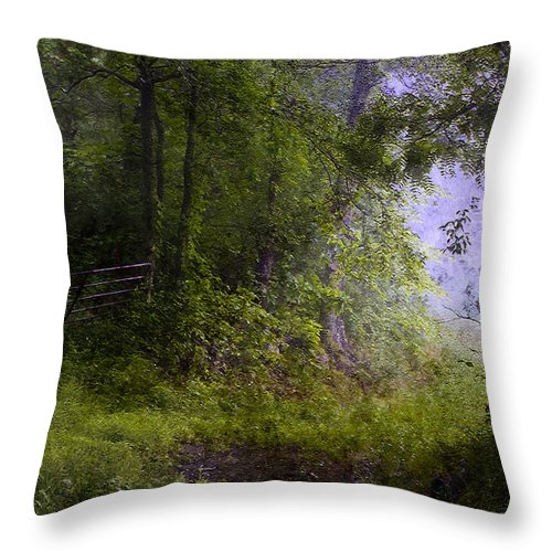 Summer Throw Pillow featuring the photograph The Road Less Traveled by Ron Jones