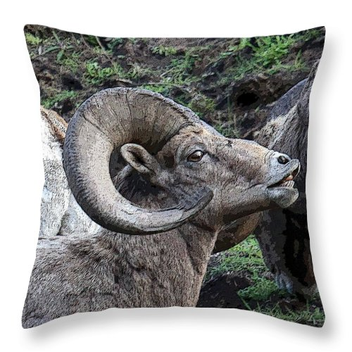 Ram Throw Pillow featuring the photograph The Scent Of Danger by Steve McKinzie