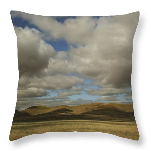 Landscape Throw Pillow featuring the photograph The Shadows Over My Heart by Laurie Search