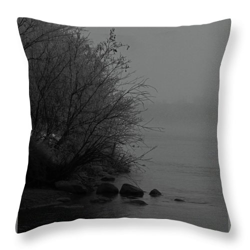 Rural Throw Pillow featuring the photograph The Shore by The Artist Project