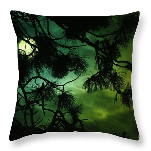 Sun Throw Pillow featuring the photograph The Sun Through Clouds And Branches by Jeff Swan