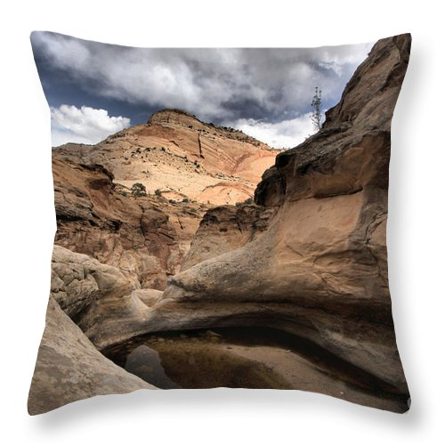 The Tanks Throw Pillow featuring the photograph The Tanks by Adam Jewell