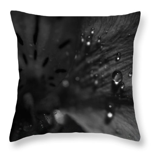 Black And White Throw Pillow featuring the photograph The Tears Have All Been Shed by Laurie Search