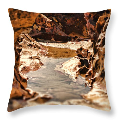 Rocks Throw Pillow featuring the photograph The Tide Is Out by Douglas Barnard