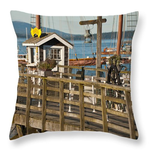 bar Harbor Throw Pillow featuring the photograph The Todd by Paul Mangold