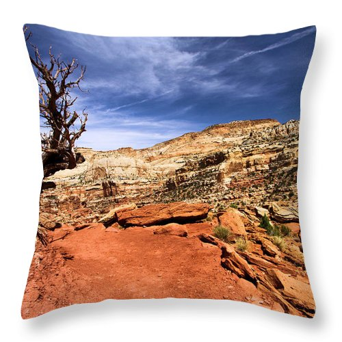 Utah Hiking Trail Throw Pillow featuring the photograph The Trail Ahead by Adam Jewell