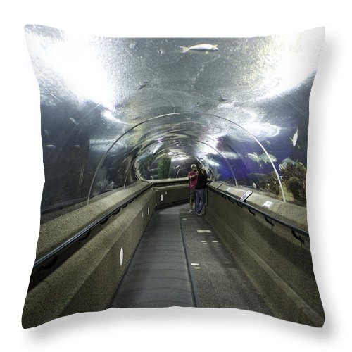 Aquarium Throw Pillow featuring the photograph The Travelator At The Underwater World In Sentosa In Singapore by Ashish Agarwal