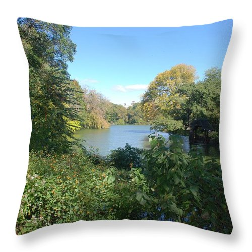 Water Throw Pillow featuring the photograph The View by Rob Hans