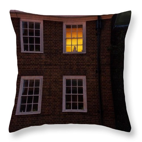 Moon Throw Pillow featuring the photograph The Vigil by Lisa Knechtel