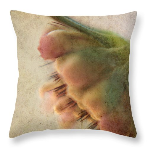 Floral Throw Pillow featuring the photograph The Wait by Bonnie Bruno