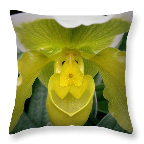 Orchid Throw Pillow featuring the photograph The Yellow Orchid by Nancy Griswold