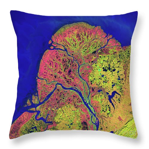 Color Image Throw Pillow featuring the photograph The Yukon Delta In Southwest Alaska by Stocktrek Images