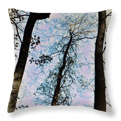 Trees Throw Pillow featuring the photograph Things Are Looking Up by Bill Cannon
