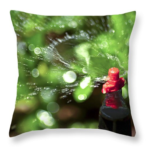Watering Garden Throw Pillow featuring the photograph Thirsty by Carolyn Marshall