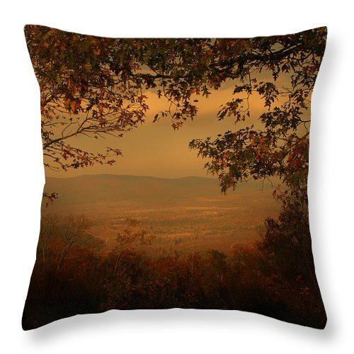 Tree Throw Pillow featuring the photograph This Land by Nina Fosdick