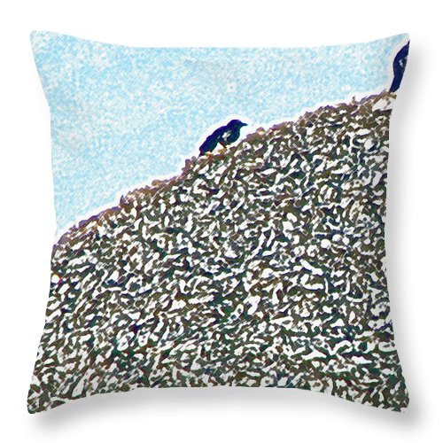Birds Throw Pillow featuring the photograph Three Crows And Oyster Shells by Pamela Patch