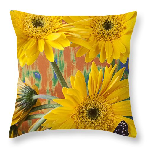 Yellow Daisy's Throw Pillow featuring the photograph Three Daisy's And Butterfly by Garry Gay