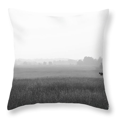 Countryside Prints Throw Pillow featuring the photograph Three Is Not A Crowd - Bw by Aimelle