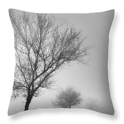 Black And White Throw Pillow featuring the photograph Three Silhouettes In The Rain by Guido Montanes Castillo