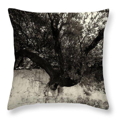 Jouko Lehto Throw Pillow featuring the photograph Through The Wall Bw by Jouko Lehto