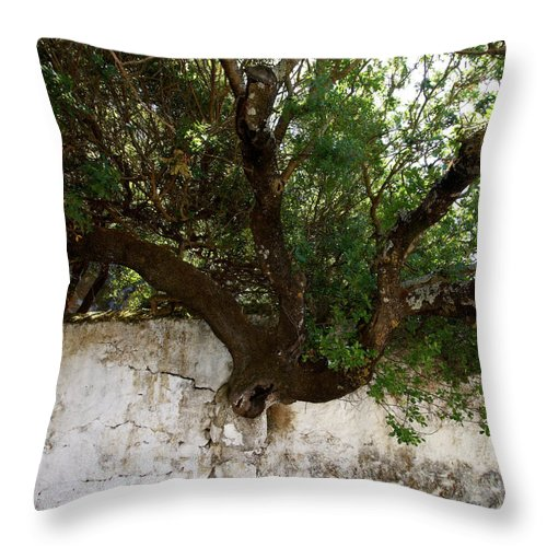 Jouko Lehto Throw Pillow featuring the photograph Through The Wall by Jouko Lehto