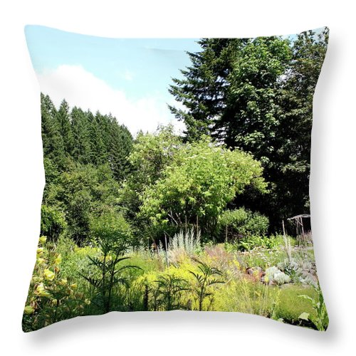 Thyme Throw Pillow featuring the photograph Thyme Garden I by Claire McGee