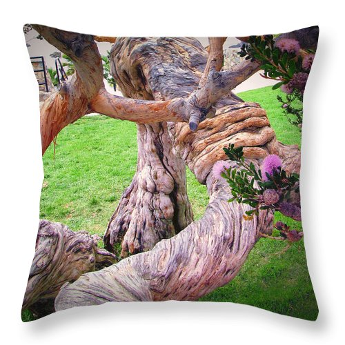 Knots Throw Pillow featuring the photograph Tied In Knots by Diane Wood