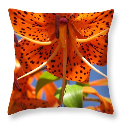 Flower Throw Pillow featuring the photograph Tiger Lily Close Up by Ausra Huntington nee Paulauskaite