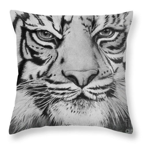 Eyes Throw Pillow featuring the drawing Tiger's Eyes by Christian Conner