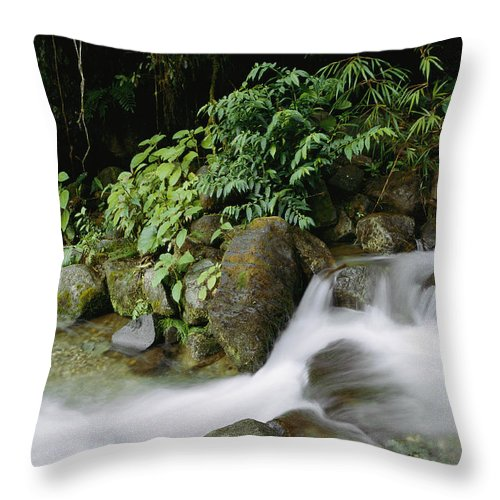 Tapanti National Park Throw Pillow featuring the photograph Time Exposure Of A Little Brook Flowing by Mattias Klum