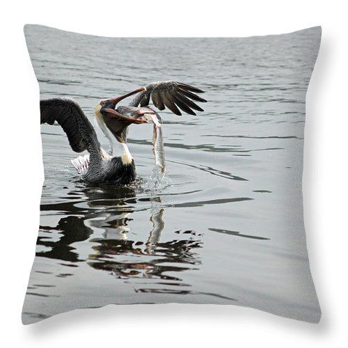 Pelican Throw Pillow featuring the photograph Time For Sushi by Suzanne Gaff
