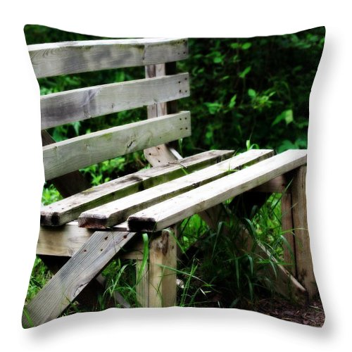Bench Throw Pillow featuring the photograph Time Out by Elizabeth Hart