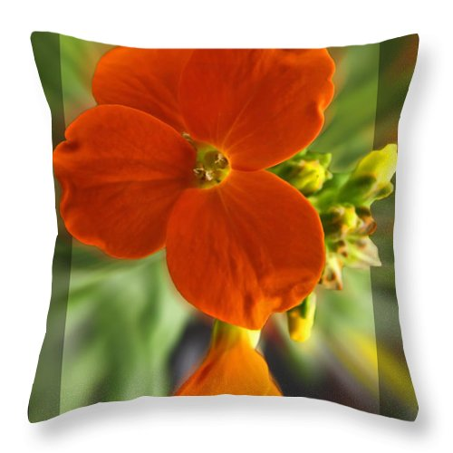 Nature Throw Pillow featuring the photograph Tiny Orange Flower by Debbie Portwood