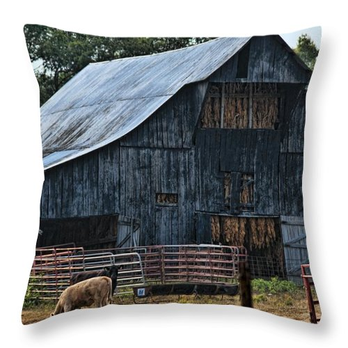 Tobacco Throw Pillow featuring the photograph Tobacco Anyone by Sheri Bartoszek
