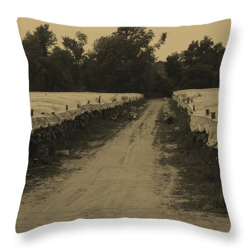 Farming Throw Pillow featuring the photograph Tobacco Road by Mike Martin