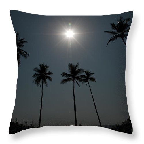 Landscape Throw Pillow featuring the photograph Together by Dattaram Gawade