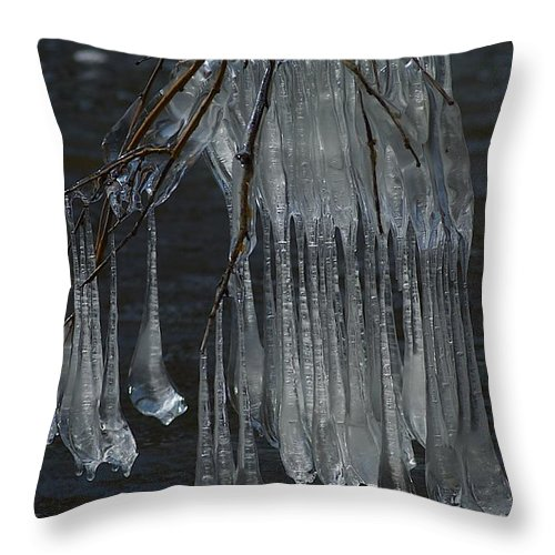 Ice Throw Pillow featuring the photograph Together by Joseph Yarbrough