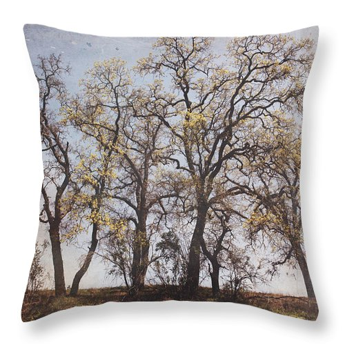 Trees Throw Pillow featuring the photograph Together We Can Do Anything by Laurie Search