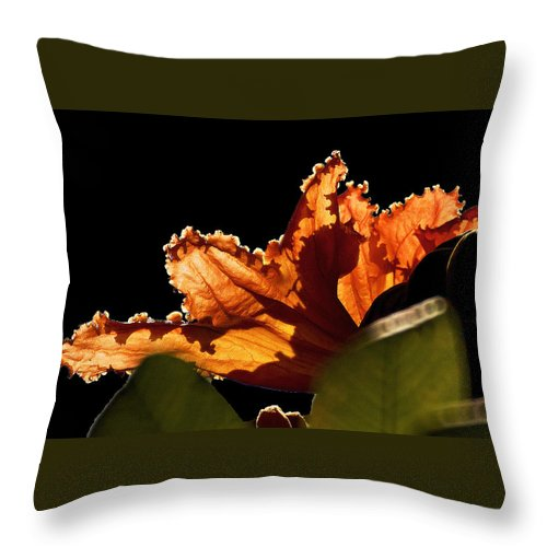 Flores Throw Pillow featuring the photograph Translucent by David Resnikoff